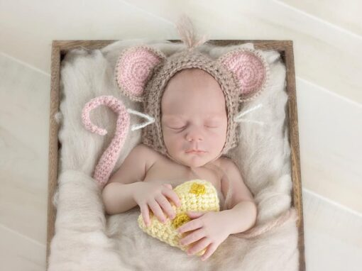 Littlest Mouse