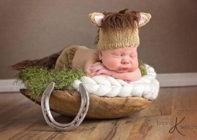 Newborn Horse Set