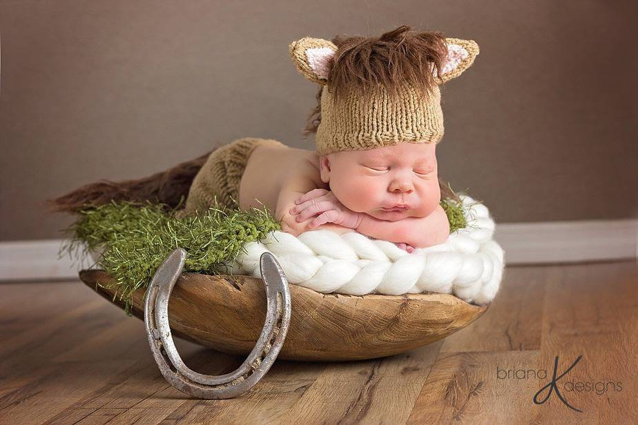 Horse Set Knit by Briana K Designs