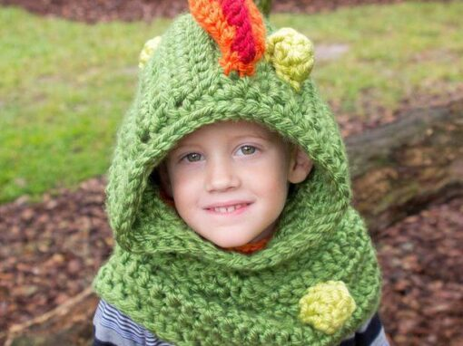 Dragon Hooded Cowl