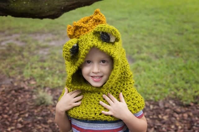 Frog Prince Hooded Cowl
