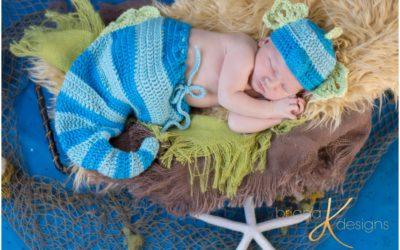 Newborn Seahorse
